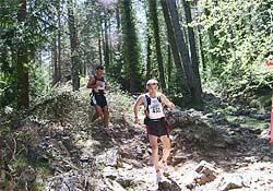 Foto: www.maratoimitja.com