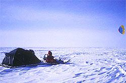 Foto: Tierras Polares