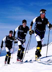 www.fsa-ski.org