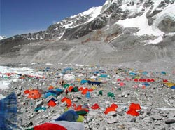 www.everestspeedexpedition.com