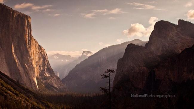 National Park Fund