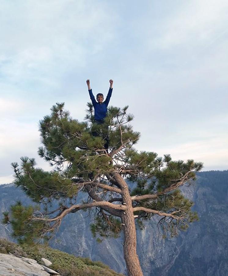 Más alto imposible. Connor Herson en el árbol de cima de El Capitan. Foto: Facebook Jim Herson