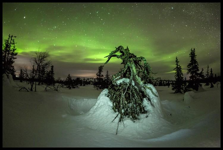 Aurora Boreal en el P.N. Risitunturi de Finlandia. Foto: Javier Camacho