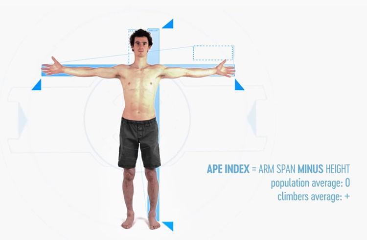 Adam Ondra explica cual es el mejor cuerpo para escalar