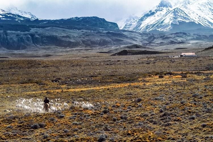 Rancho en Patagonia que abastece a Devold. Foto: Devold