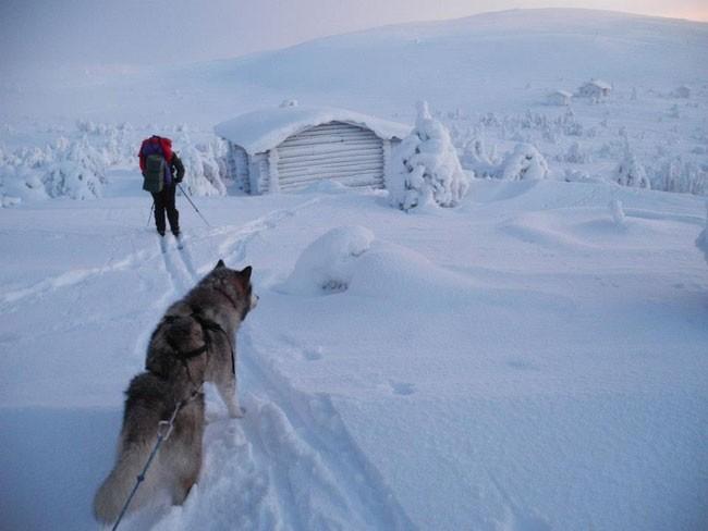 José Mijares, con Lonchas, en la travesía en solitario de 2 meses por Laponia. Foto: Mijares