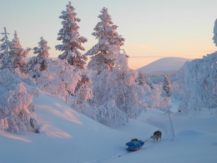 José Mijares y Lonchas, invierno en la Laponia finlandesa. Foto: José Mijares