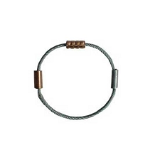 Cassin Copper Head Circular