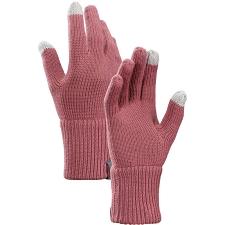 Arc'teryx Diplomat Glove
