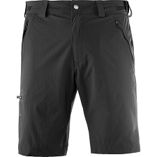 Salomon Wayfarer Short
