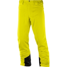 Salomon Icemania Pant