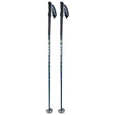 Ski Trab Maestro Pole