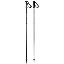 Salomon Artic Poles