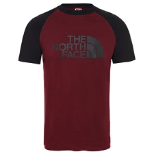 The North Face Raglan Easy Tee