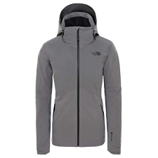 The North Face Apex Flex Gtx Thermal Jacket W