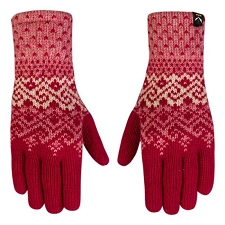 Salewa Fanes WO Gloves W