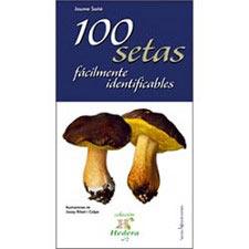 Ed. Lectio 100 Setas Fácilmente Identificables