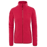 The North Face 100 Glacier Full Zip W