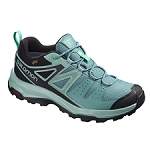 Salomon X Radiant GTX W