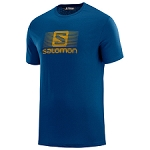 Salomon Blend Logo SS Tee
