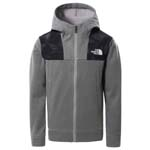 The North Face Surgent FZ Hoodie Boy