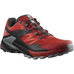 Salomon Wings Sky