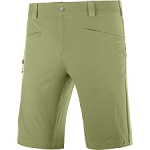 Salomon Wayfarer Shorts