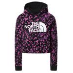 The North Face Drew Peak Hoodie Girl