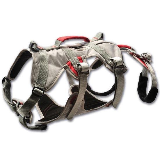 Ruffwear Doubleback Harness - Graphite