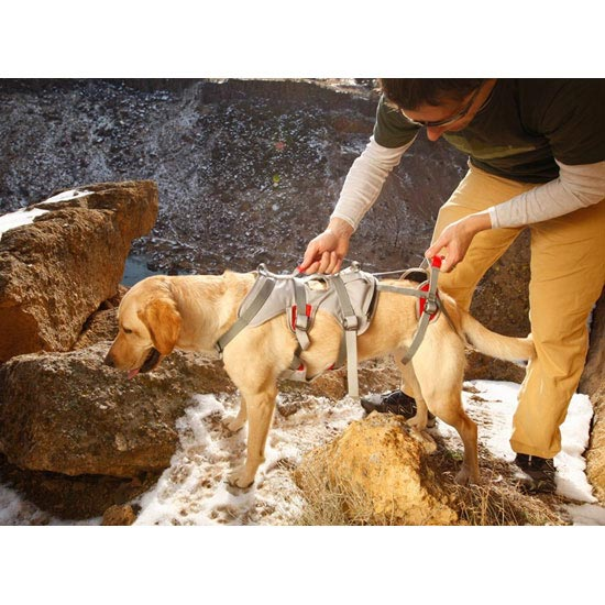 Ruffwear Harnais Doubleback Harness - Photo de détail