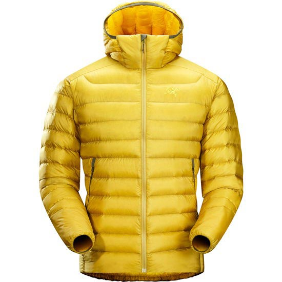 Arc'teryx Cerium LT Hoody - Golden Palm