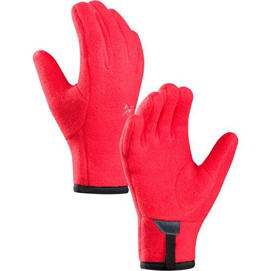 Arc'teryx Delta Glove W - S