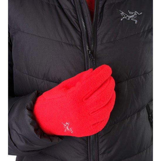 Arc'teryx Delta Glove W - Photo de détail
