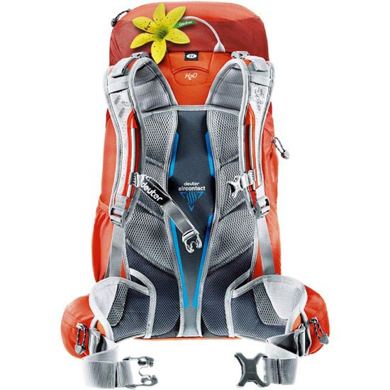 Deuter ACT Trail Pro 38 SL W - Photo de détail