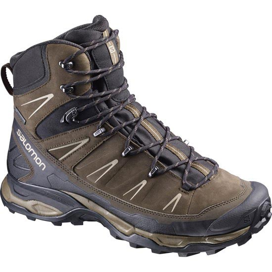 Salomon X Ultra Trek Gtx - Brown/Black