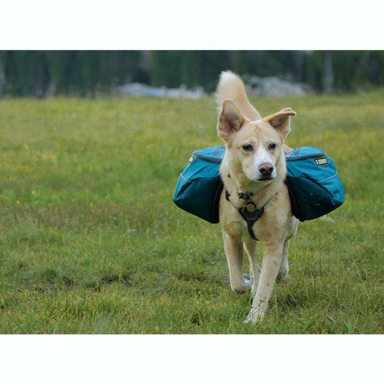 Ruffwear Approach Pack - Photo de détail