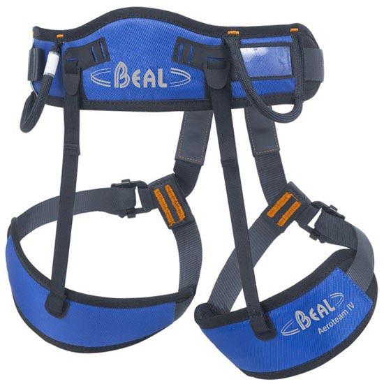Beal Aeroteam IV - Photo de détail