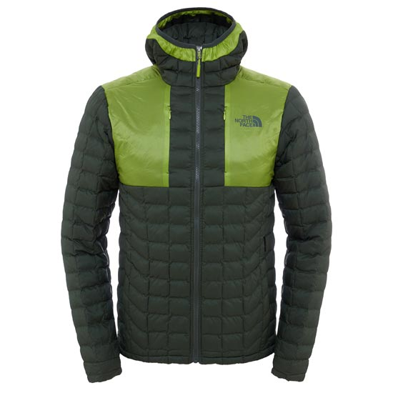 The North Face Thermoball Plus Hoodie - Climbing Ivy Green/Chive Green