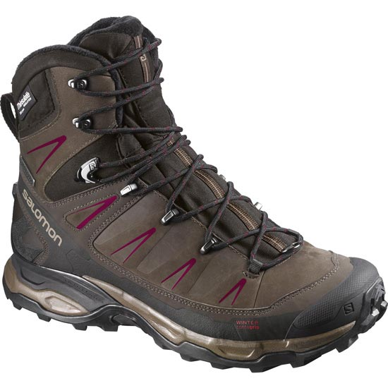Salomon X ULtra Winter CS WP W - Brown