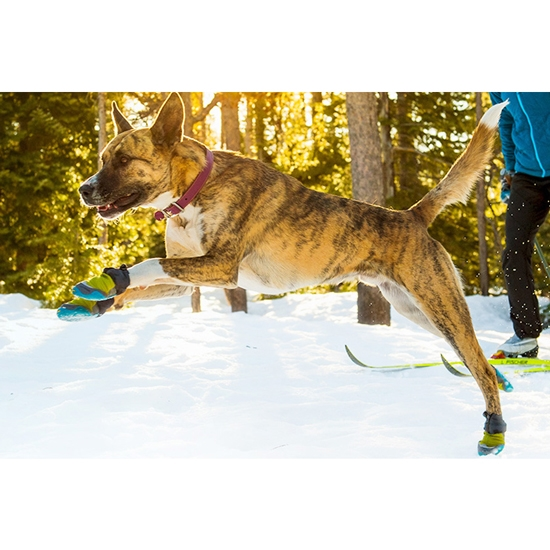 Ruffwear Polar Trex XS - Photo de détail
