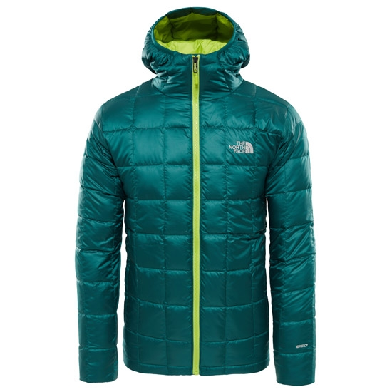 The North Face Kabru Hooded Down Jacket - Botanical Garden