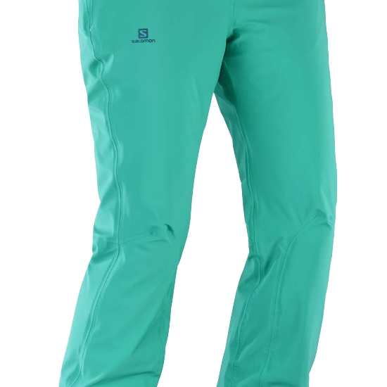 Salomon Icemania Pant W - Photo of detail