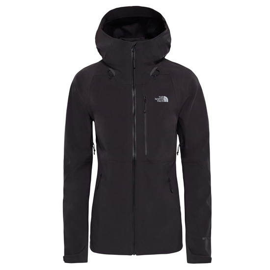 The North Face Apex Flex GTX 2.0 Jacket W - Black