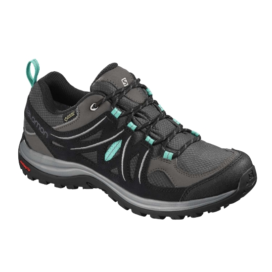 Salomon Ellipse 2 GTX W - Magnet