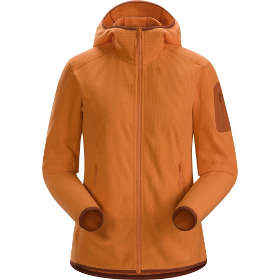 Arc'teryx Delta LT Hoody W - Awestruck