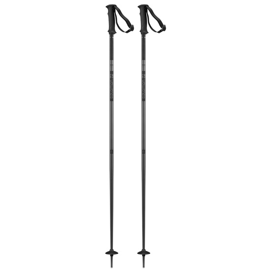 Salomon Artic Poles - Black