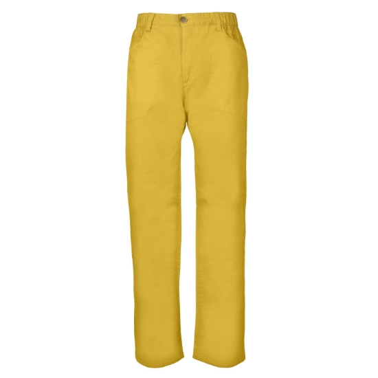 Rock Experience Rushmore Pant - Gold