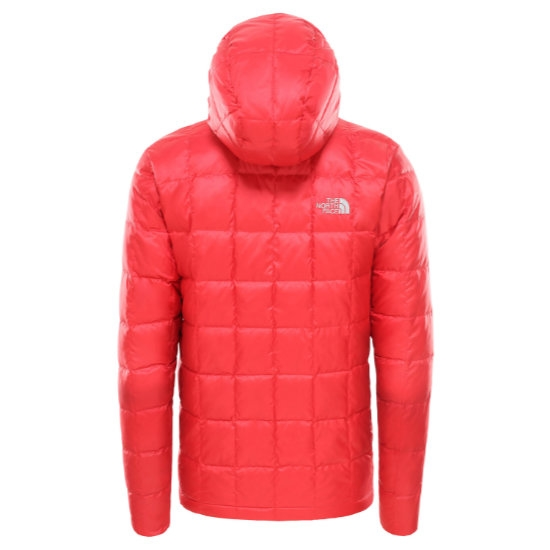 The North Face Kabru Hooded Down Jacket - Photo of detail
