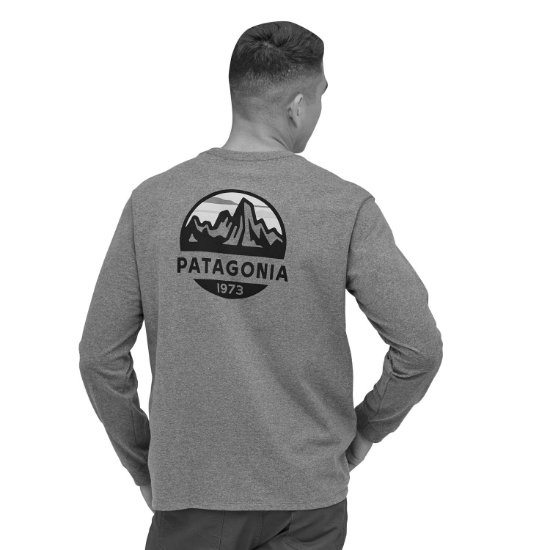 Patagonia Fitz Roy Scope Responsibili-Tee - Photo of detail