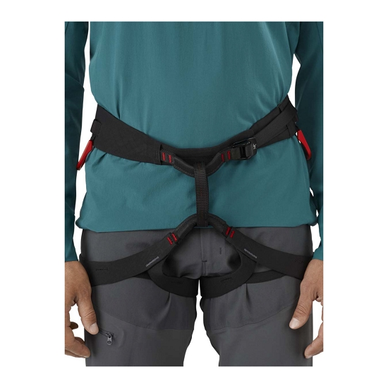 Arc'teryx C-Quence Harness - Detail Foto